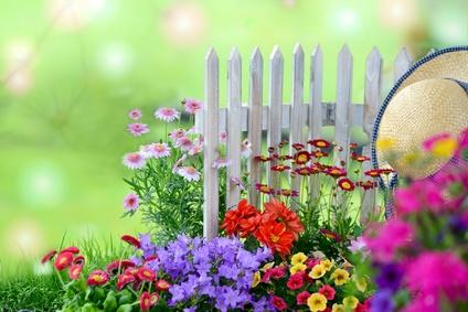 Blumenbeet im Sommer