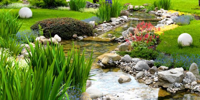 japanische Pflanzen
