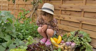 kindgerechter Garten