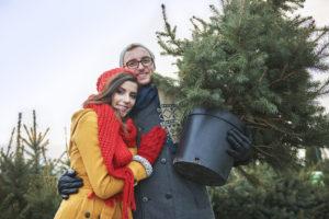 Nicht jeder weihnachtsbaum im topf eignet sich f r die - Weihnachtsbaum im topf kaufen ...