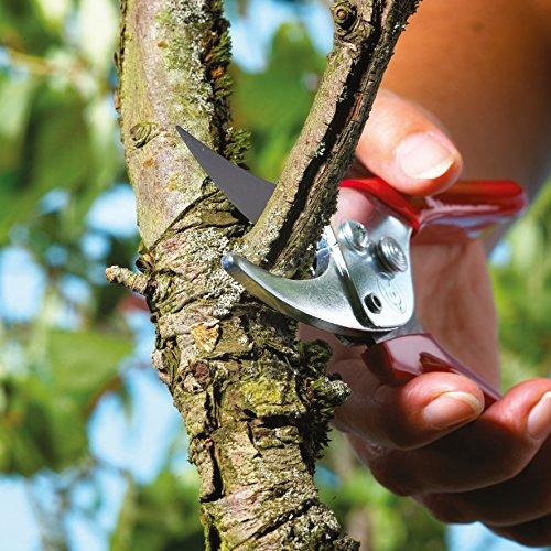 Gartenmobel Gebraucht Worms :  schneidige Gartenschere »Aktion« RREN; 7223007 – Garten Blog