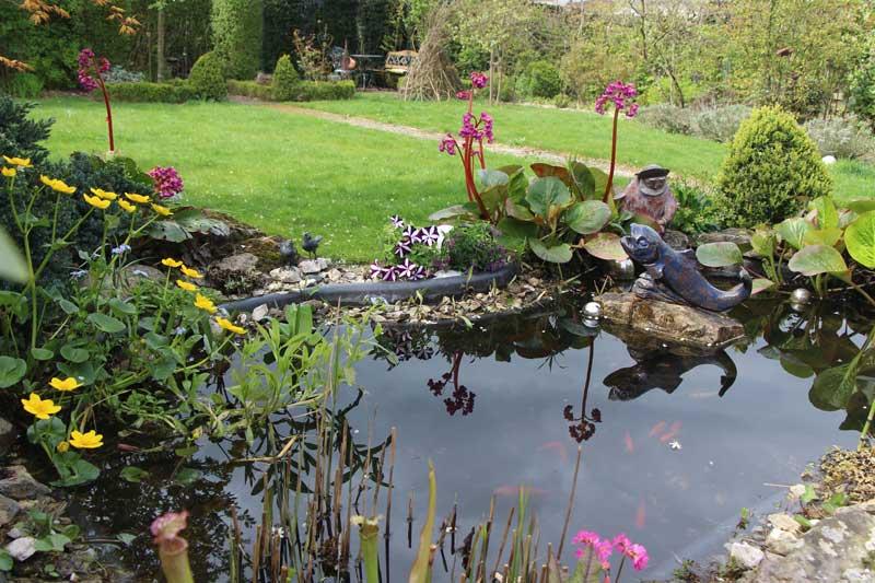 Wasser Im Garten Garten Blog
