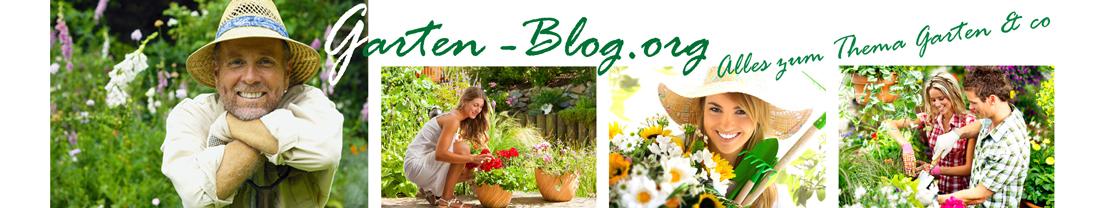 Garten Blog