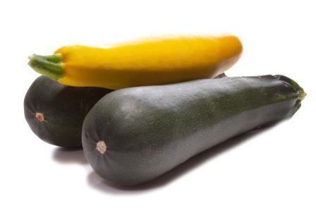zucchini anbauen so geht es richtig garten blog. Black Bedroom Furniture Sets. Home Design Ideas