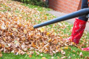 die bunten laubbume im herbst sind eine richtige pracht doch auch eine richtige herausforderung wenn das laub fllt - Terrasse Im Garten Herausvorderungen