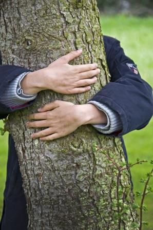 Wer seine Pflanzen liebt, der sollte sie zum richtigen Zeitpunkt schützen :-)