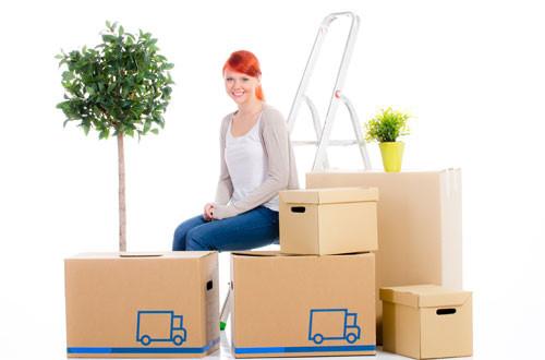 wie sie bei einem umzug pflanzen richtig transportieren garten blog. Black Bedroom Furniture Sets. Home Design Ideas