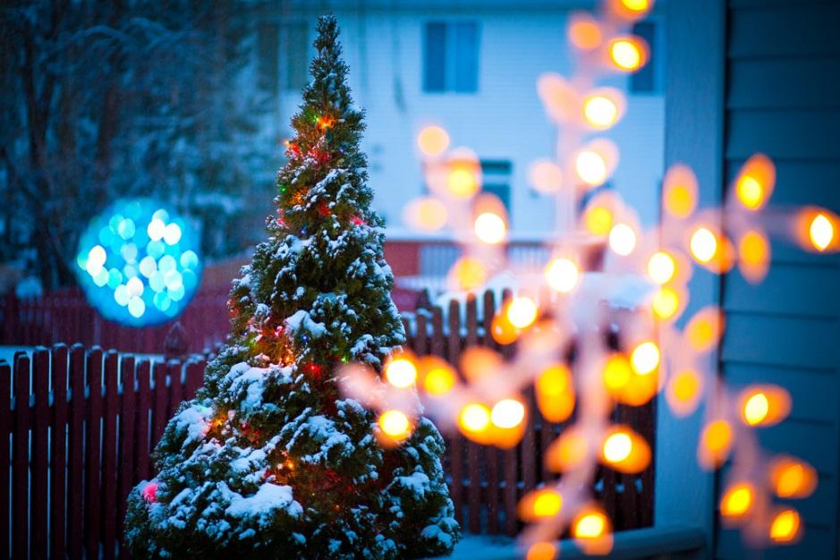 Blinkende weihnacht lichterglanz im garten garten blog - Weihnachtsbeleuchtung garten ...